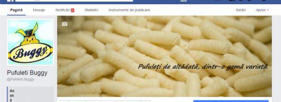 FB BUGGY